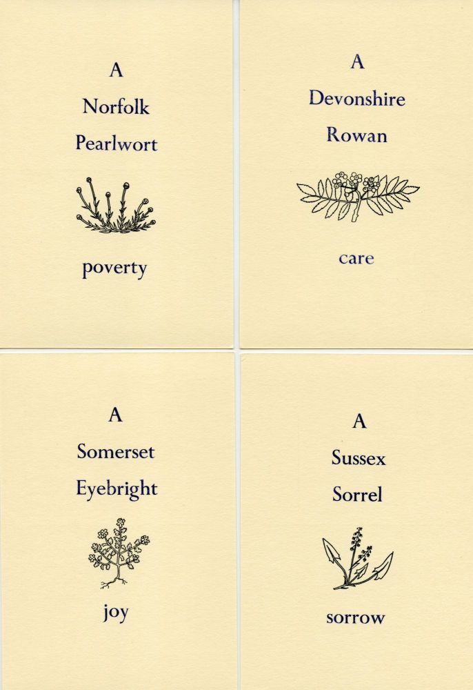 Four English Flowers With Local Flower Names. Thomas A. Clark, Laurie Clark. Moschatel Press. [c. 1974–79].
